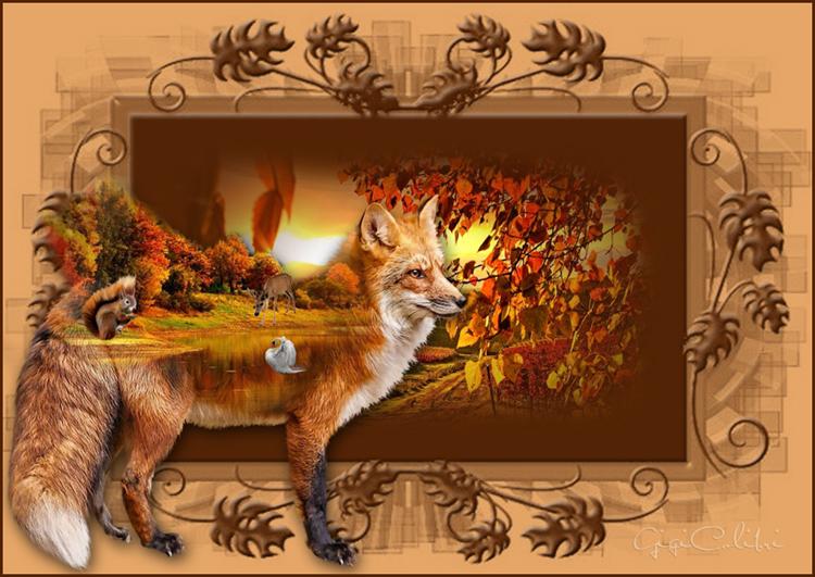 23 version un renard pas comme les autres