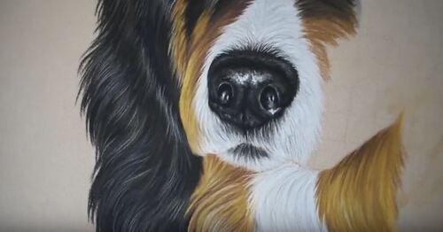Dessin et peinrture : Comment dessiner ou peindre une truffe de chien, au crayon pastel ?