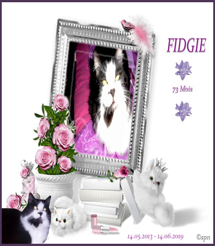 Fidgie