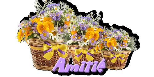 Floral dewdrops de Denise chez Franie Margot