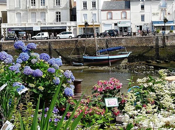 Marche-aux-vegetaux-17-6-12-P1270466.JPG