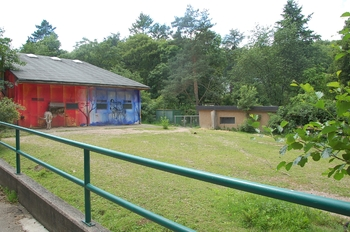Zoo Neunkirchen 2012 085