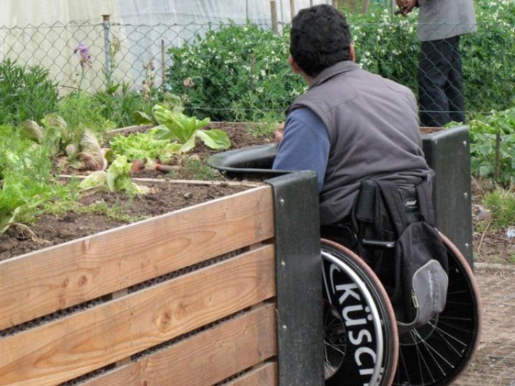 homme en fauteuil roulant devant jardin aménagé