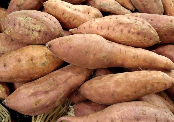 Bœuf aux patates douces