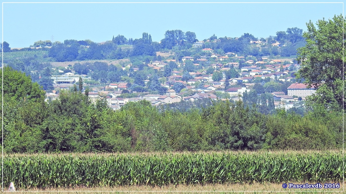 Le long du canal latéral à la Garonne - Août 2016 - 6/12
