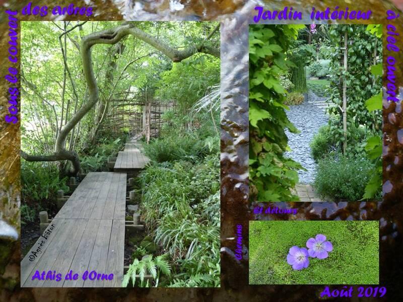 Le jardin intérieur à ciel ouvert