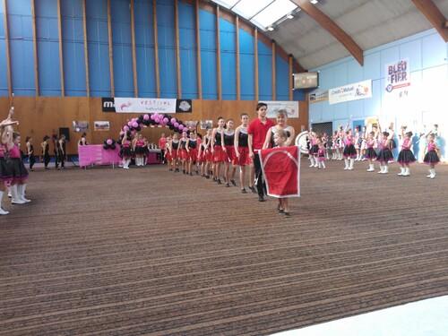 3e festival des phoenix de Nangis