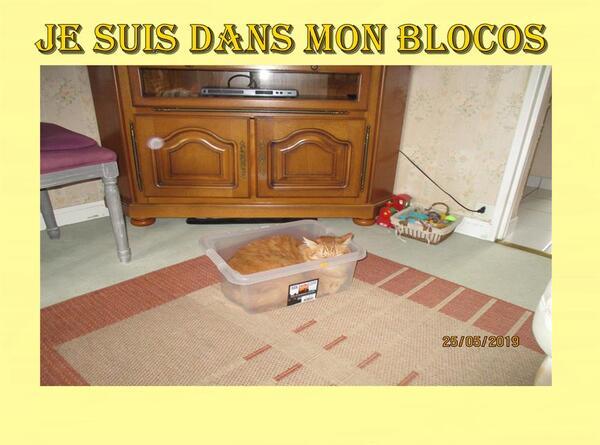 Blockaus.... Blocosse .......