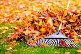 Les feuilles mortes se ramassent à la pelle ...