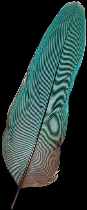 bleu rideaux