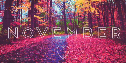 Mes lectures du mois #3 : Novembre