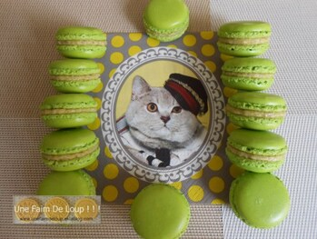 Macarons : # 1 la customisation