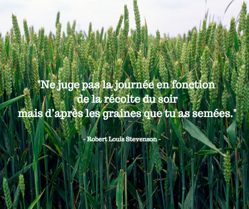 Quelques citations.