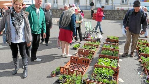 Plus de 700 visiteurs sont venus à la foire aux plantes de l'école Saint-Jean, samedi.