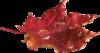 PNG Ősziek