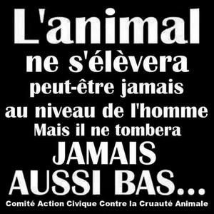 L'ANIMAL ..... L'HOMME