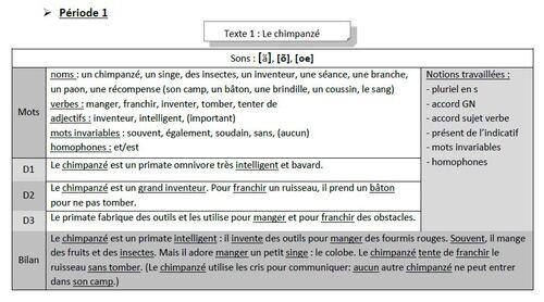 Dictées flash programmation Picot de Katia : version pour élèves dys et en difficulté