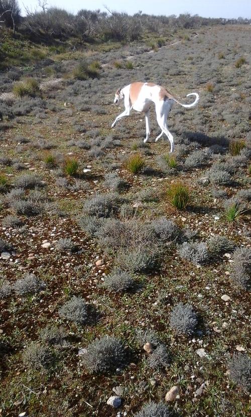 Fjord en balade Mars 2015