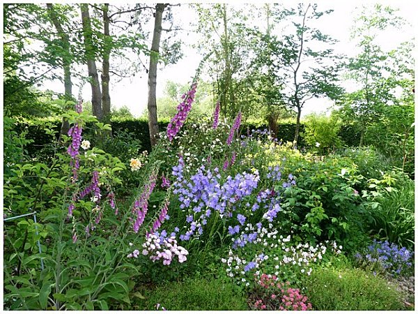 bouquet-de-plusieurs-fleurs.jpg