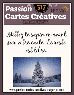 Passion Cartes Créatives#517 !