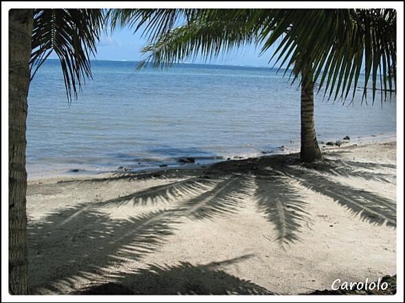 Tahiti (4)