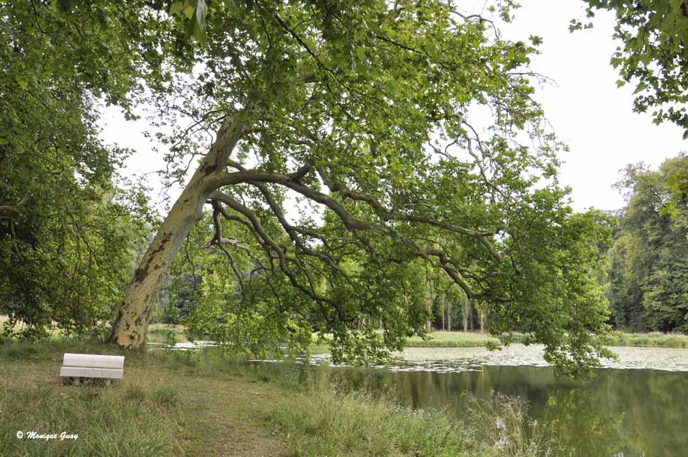 Parc Jean-Jacques Rousseau (1/2)