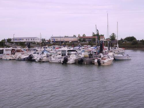 Port de Meschers