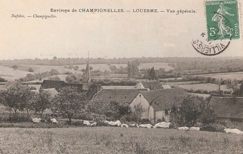 Famille Cheminant, Fontaines, Toucy, Tannerre-en-Puisaye (89)