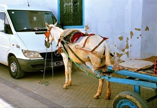 02 Tunis 117