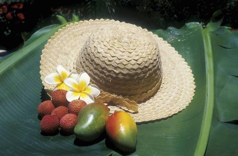 """Résultat de recherche d'images pour """"legumes anciens à la Réunion"""""""
