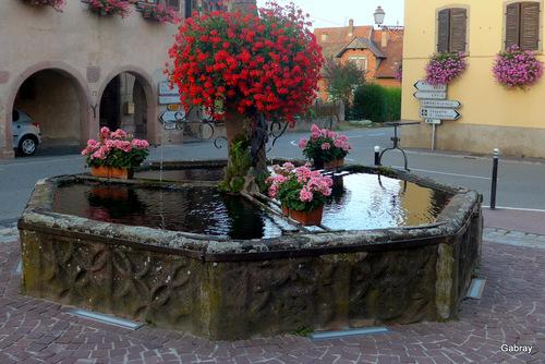 Alsace: une cave à vin!