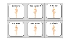 Jeu de plateau : le corps humain