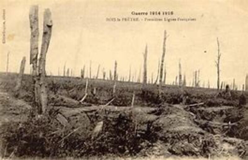 Le bois le Prêtre