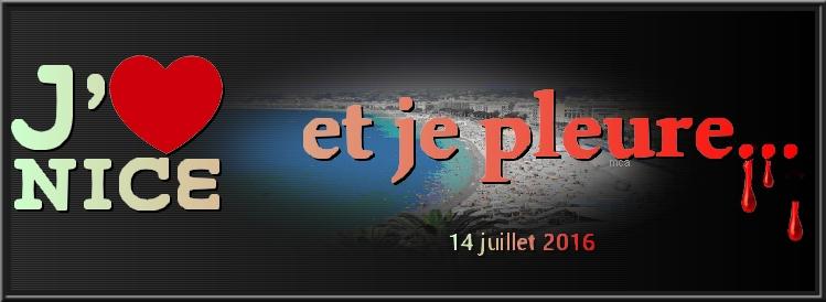 14 juillet 2016 à Nice...Soutenons tous ceux qui souffrent par cet attentat diabolique !