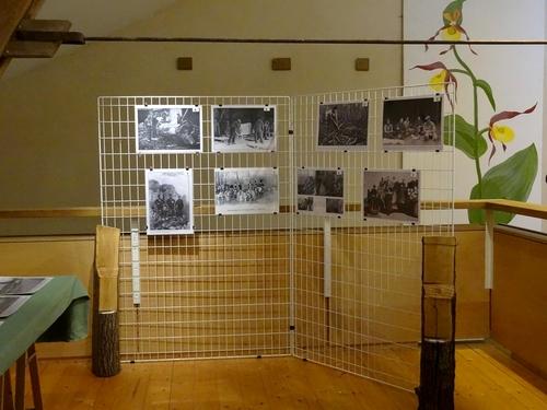 La Fête de l'Automne 2013 à la Maison de la Forêt de Leuglay...