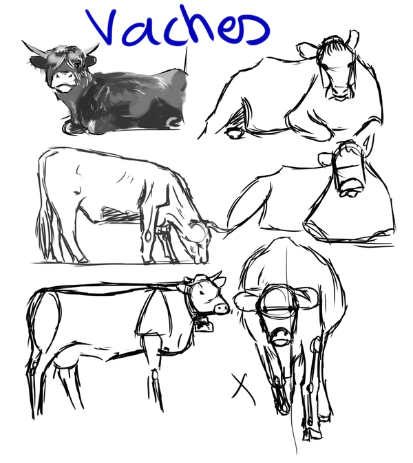 Avril 2015 vaches