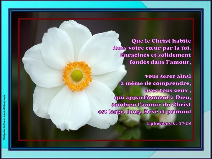 L'amour du Christ est large, long, élevé et profond - Ephésiens 3 : 17-18