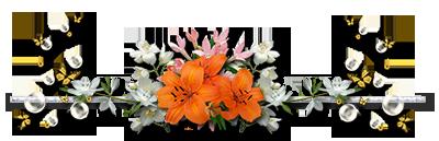 Barres de séparations, nature, fleur