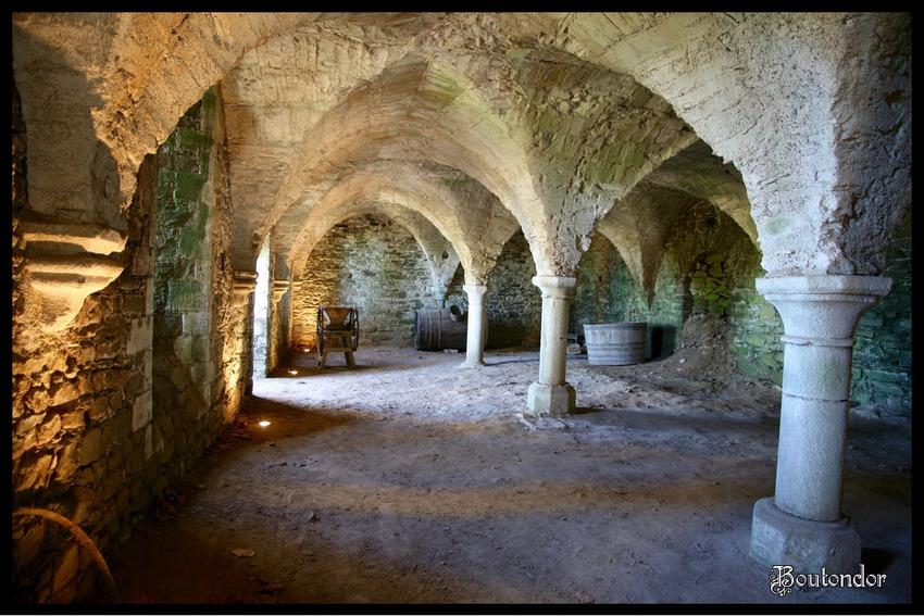Paimpol - Abbaye de Beauport( Côtes-d'Armor 22)-3