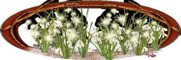 BARRES DE SEPARATION fleurs png