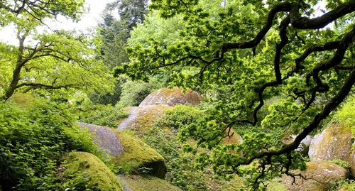Les Rochers de Huelgoat, Monts d'Arrée (Bretagne)