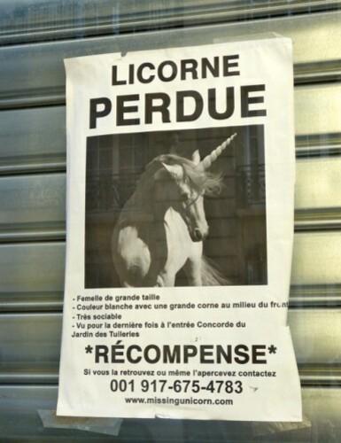 affiche licorne perdu 50784