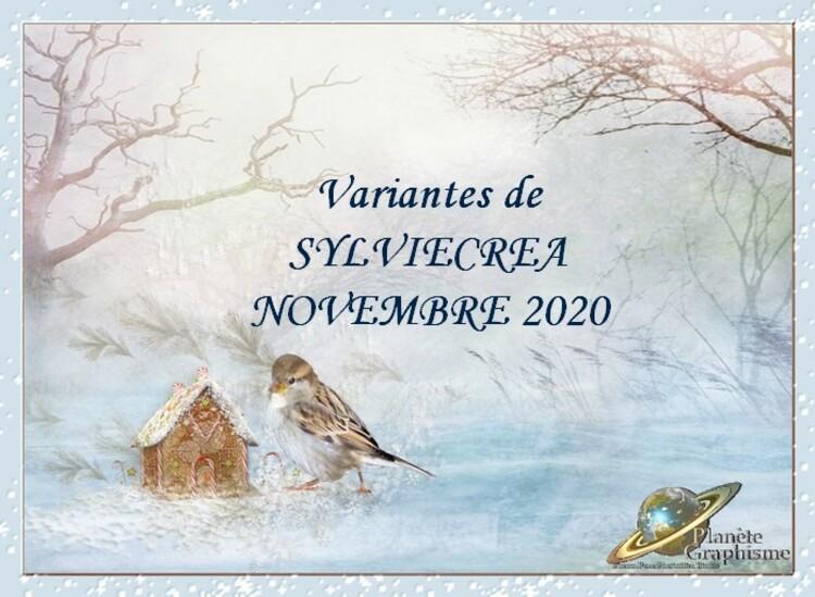 Variantes sur cours et tutos de Novembre 2020
