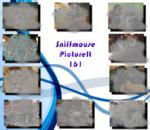 PictureIt 161 - Sniffmouse