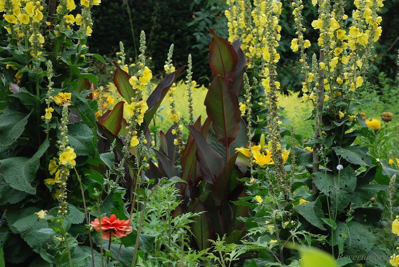 Sissinghurst Castle Gardens 2