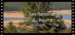 Provence en vidéos