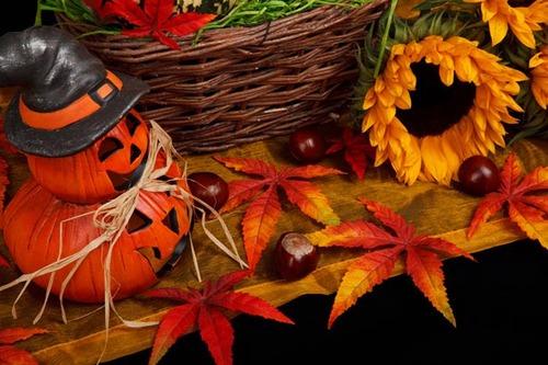 Les raisons qui me font aimer l'automne