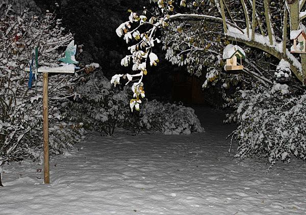 neige-1.jpg