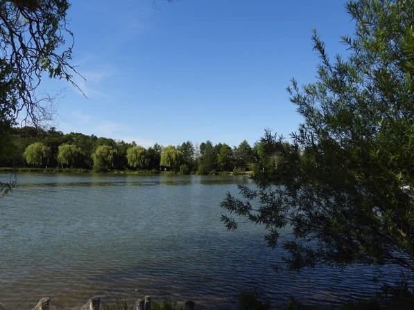 Le lac de Damville
