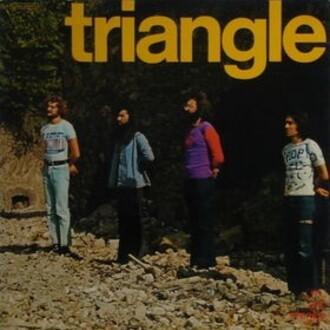 TRIANGLE-33T-2.jpg